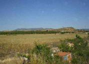Terreno rural en pinoso precio 45.000 eur