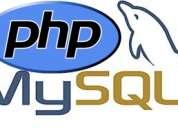 Programador aplicaciones web socio-colaborador posibilidad contrato