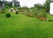 Jardineria , limpieza en general , pintura